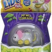 Интерактивные мышки Little live pets Lil´ mouse. оригинал. одна на выбор