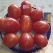 Семена томата Гусиное яйцо и тыквы Арабатская