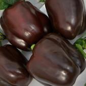В лоте на выбор: перец шоколадный Caramel, черный Midnight Dream, фиолетовый Lilac Bell