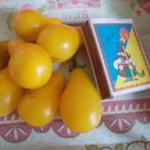 Помидоры!!! Жёлтые Лот   - 50 семян