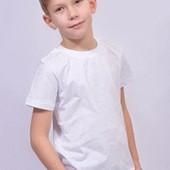 Дві класні біокотонові футболки для хлопчика одним лотом. Lupilu,  Германія.