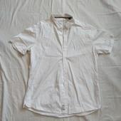 Брендовые рубашки с Германии✓Все в лоте✓Качество и состояние безупречное✓Не пожалеете✓