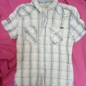 Мужская рубашка размер S стопроцентный хлопок