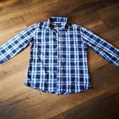 Мужская рубашка Colin's L. Идеал. Замеры.