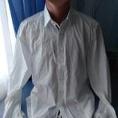 Мужская рубашка, р.L/XL