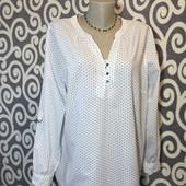Модная, котоновая рубашка-туничка к джинсикам для стильных, пышненьких девушек.