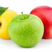 В лоте 5 шт. саженцев, яблоня разных сортов - яблоня Сюрприз, читайте описание.