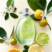 Scent Essence Sparkly Citrus раскрывается сочной мелодией спелых мандаринов и бергамота!!