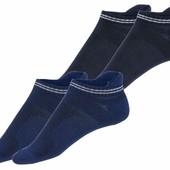 Жіночі шкарпетки /2 пари/. Розмір 37/38