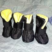 Ботиночки на маленькую собачку