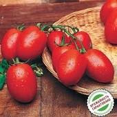 """Томат """" Рио гранде"""".. Популярный, универсальный, засухоустойчивый. Соление,консервирование, томат"""