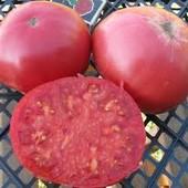 томат розовая земляника-сплошная помидорная мякоть!
