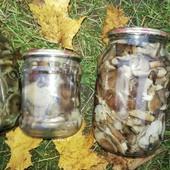 Грибы грибочки опята маринованные 1л.