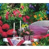 """Цветочная смесь """" Беседка"""". Семена. Вьющиеся растения разнообразной окраски."""