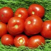 Семена помидор Волгоградский . Посев в открытый грунт.
