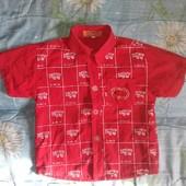 Модная рубашка размер 14 (41 длинна)