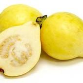 Семена невероятно полезного фрукта свежие семена Гуавы лот 10шт