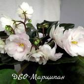 Вкорінений листочок - ДЕО-Марципан